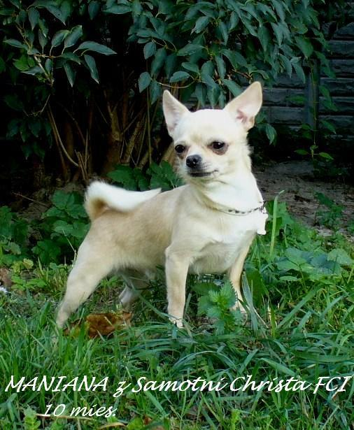 Maniana